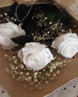ramo preservado de rosas blancas