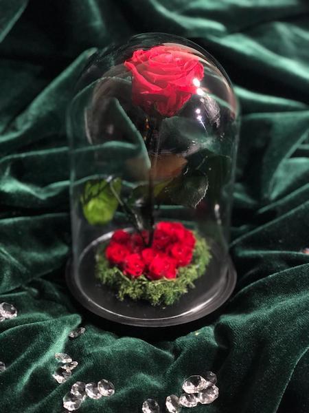 cúpula petit coeur roja