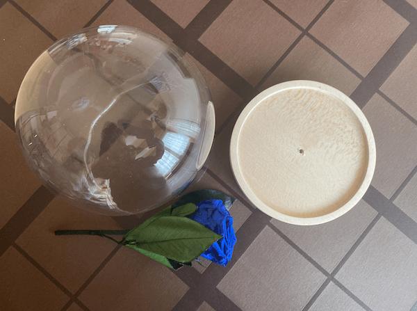 cómo crear la rosa encantada en casa
