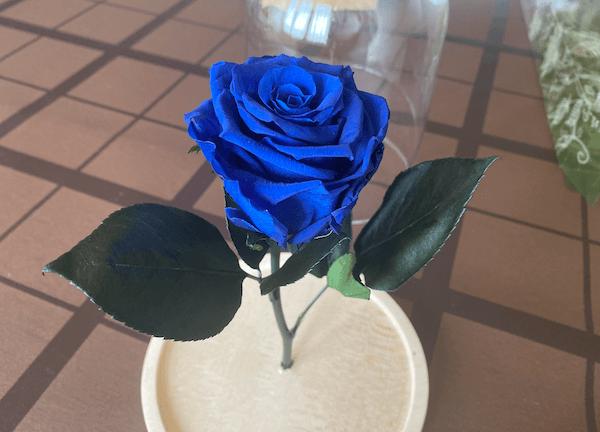 cómo hacer la rosa de la bella y la bestia