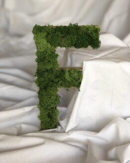 letras con musgo