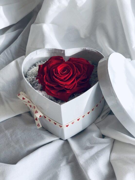 caja con rosa preservada corazon