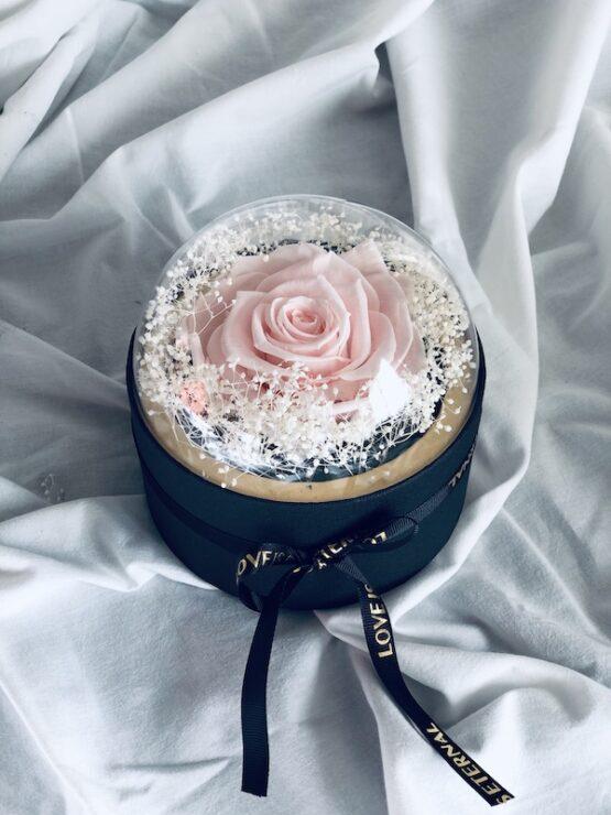rosas preservadas en cajas